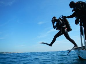 All You Need To Know About Scuba Diving In Malta
